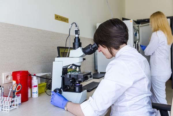Badanie fragmentacji DNA plemników